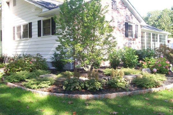 landscape Garden1